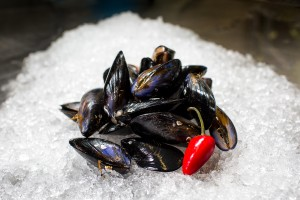 Mussels small